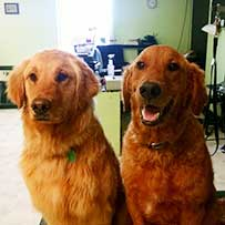 Kasper and Madison
